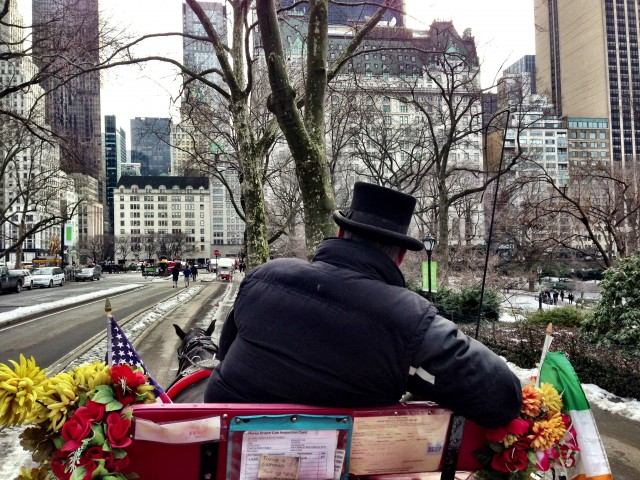 Carriage ride in  Central Park.