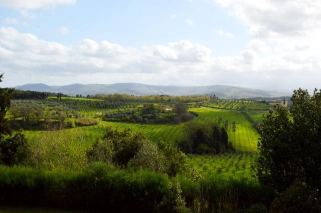 View from Castello Del Nero.
